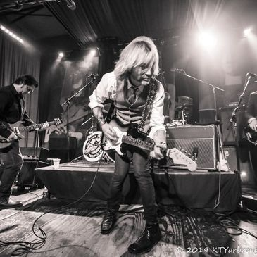 The Damn Torpedoes - Tribute to Tom Petty-img