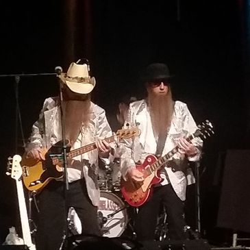 Cheap Sunglasses - Tribute to ZZ Top-img