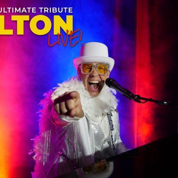 Elton Live!-img