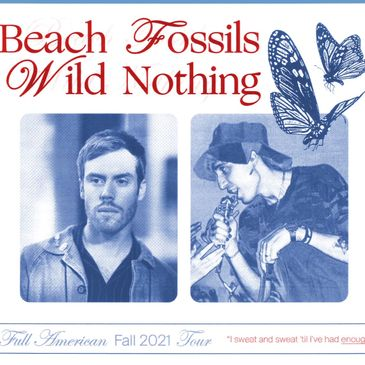 Beach Fossils & Wild Nothing-img