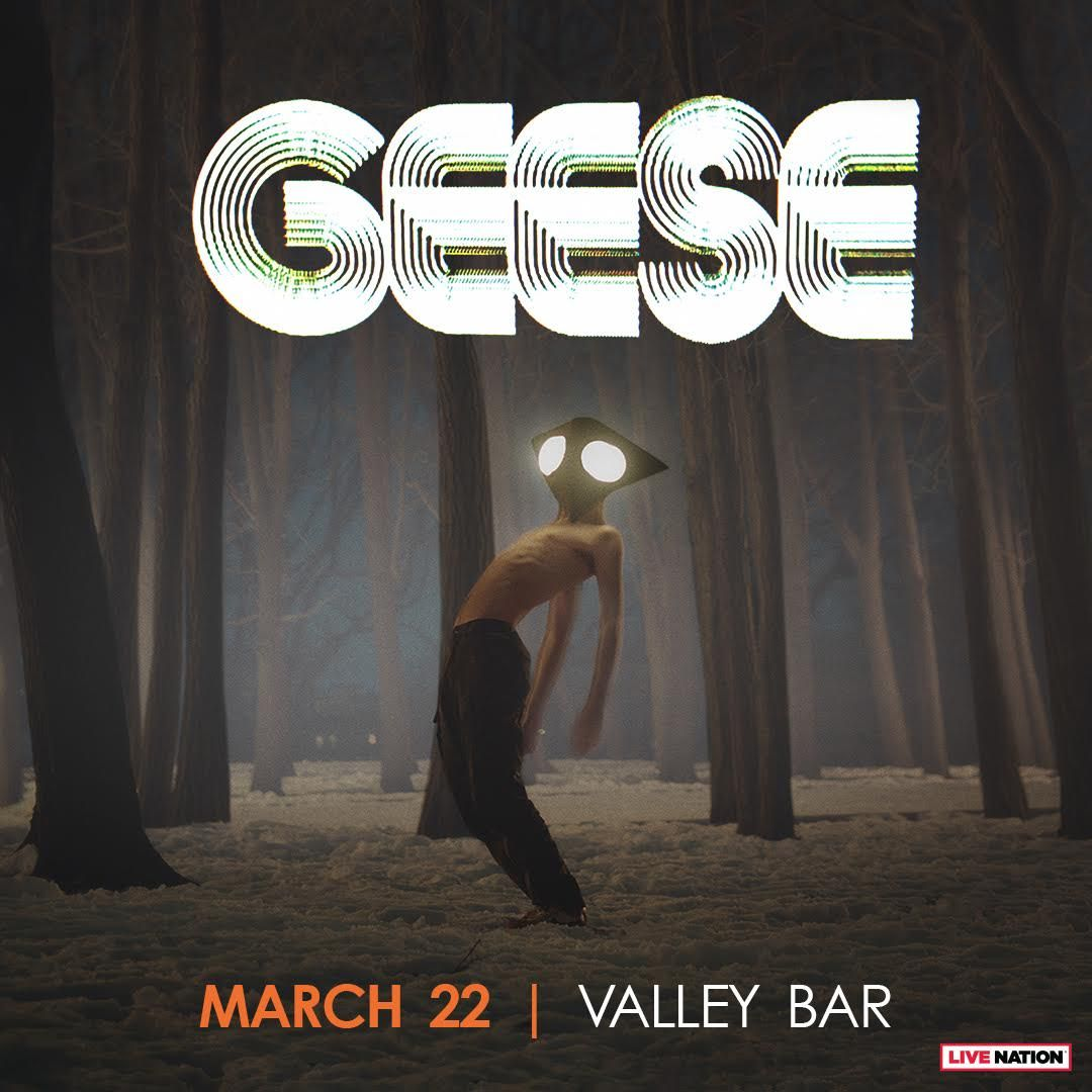 Geese: