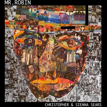 Mr. Robin: By Christopher and Sienna Sears-img