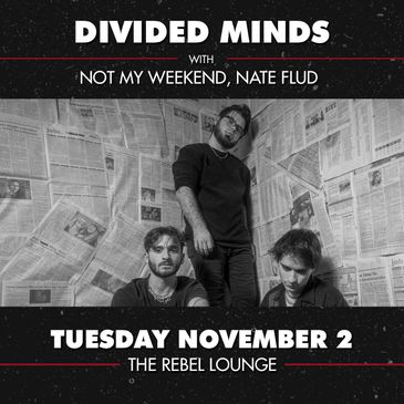 DIVIDED MINDS-img